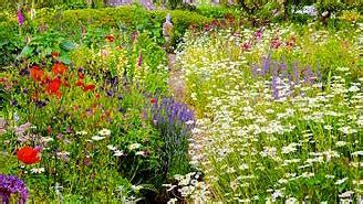 Plan De Jardin Sauvage by Le Jardin Anglais