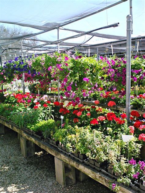 Garden Center Nursery Garden And Nursery Stores Thenurseries