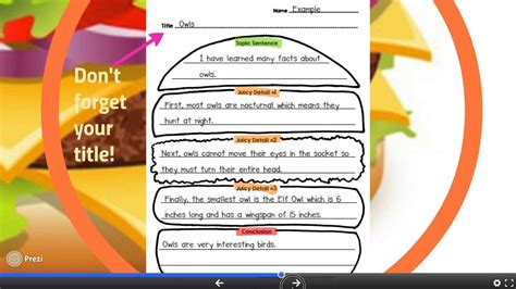 Essay Structure Year 10 by Hamburger Paragraph Writing In Second Grade