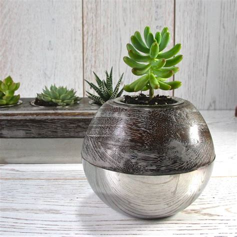 succulent holder steel and wood globe succulent holder slight second by