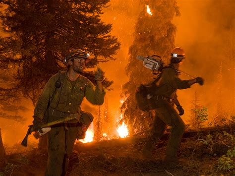 forest service launches new wildland fire website usda