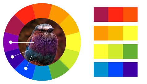 analogous color scheme exles color theory the basics useful tools and further