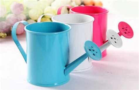 Gardeners Supply Watering Can Gardeners Supply Watering Can 28 Images 1000 Images