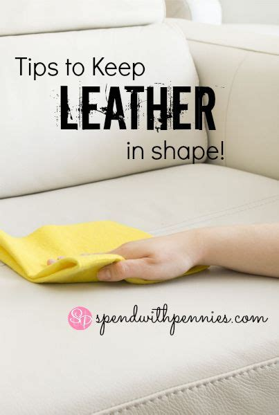 how often should i condition my leather couch 14 best images about leather care on pinterest stains