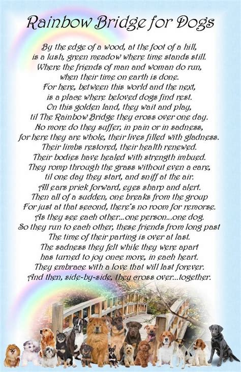 rainbow bridge poem for dogs rainbow bridge pet poem printable search dealing with grief prayers of