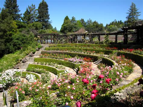 Berkeley Garden by Places For Hiking Golden