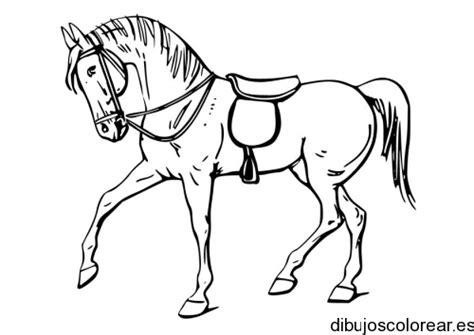 imagenes para colorear un caballo caballos