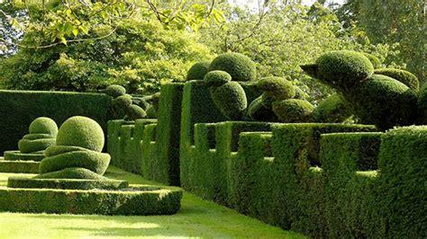 piante nane da giardino 10 piante ideali per siepi da giardino