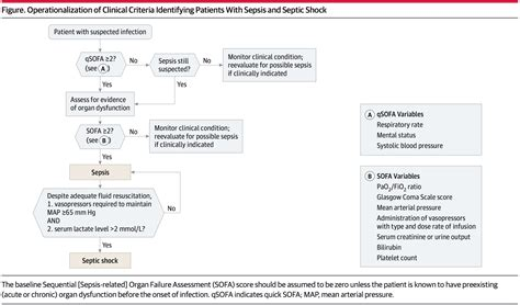 sofa sepsis qsofa quick sofa score for sepsis identification mdcalc
