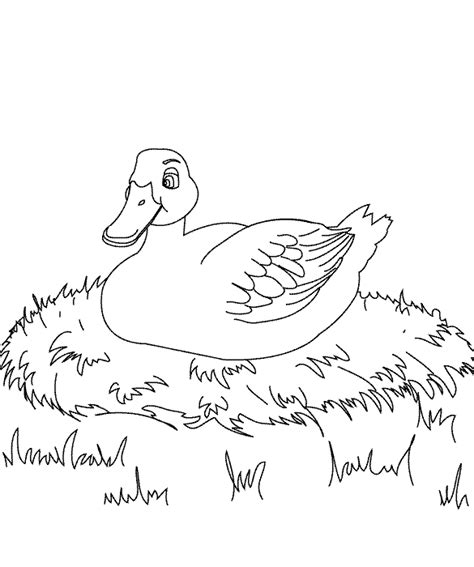 coloring pages the ugly duckling page 1