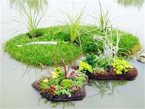 Planter Pond by Several Sizes Styles Of Floating Islands And Floating