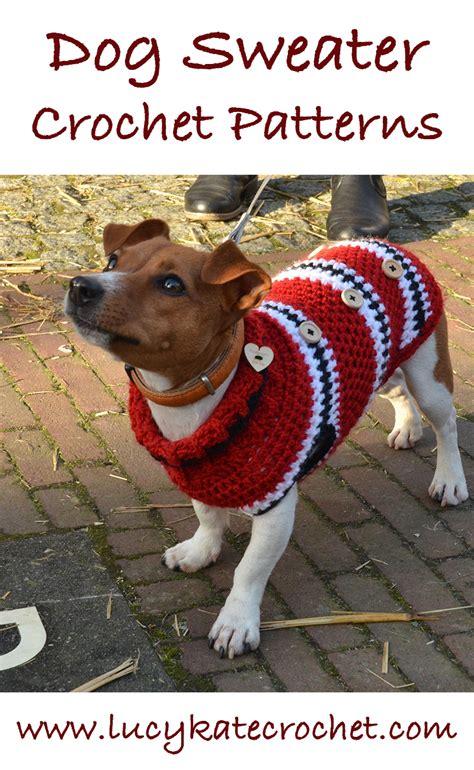 pattern for dog coat with legs a guide to the best free crochet dog sweater patterns by