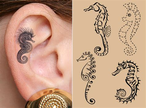 wear your imagination creative ideas to grace seahorse