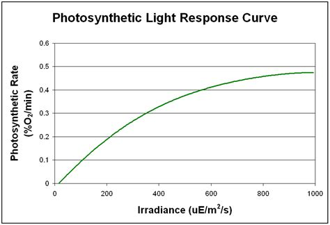 How Does Light Intensity Affect Photosynthesis by Morris