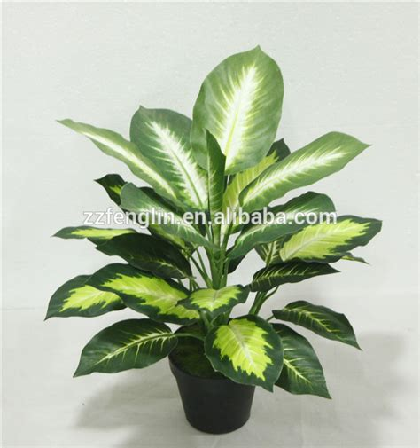cheap indoor plants cheap wholesale outdoor indoor decorative potted plant marking artificial dieffenbachia