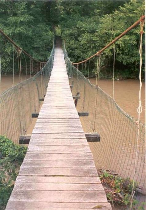 swinging bridges maui 62 best images about swinging bridges on pinterest