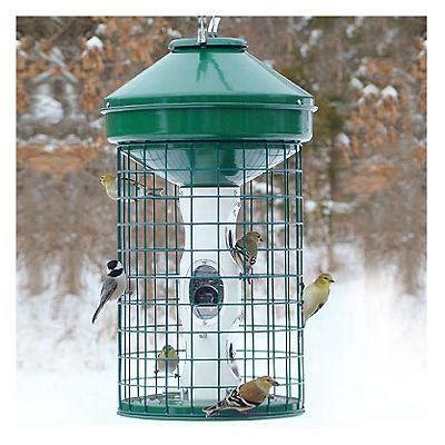 varicraft avian mixed seed wire cage bird feeder