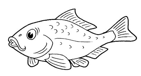 Fish Images To Color fish to color cartoonrocks pictures of in images we