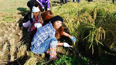 Fashionista Farm Gals of Tokyo   Our World