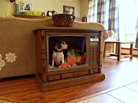 fried okra console tv to dog bed
