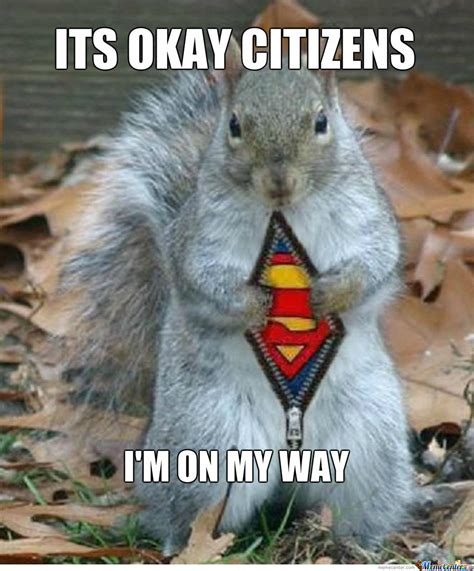Chipmunk Meme - new level chipmunks by sarahverbruggen meme center