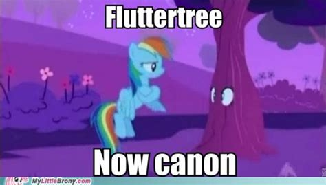 My Little Brony Meme | image my little brony meme comic fluttertree now canon