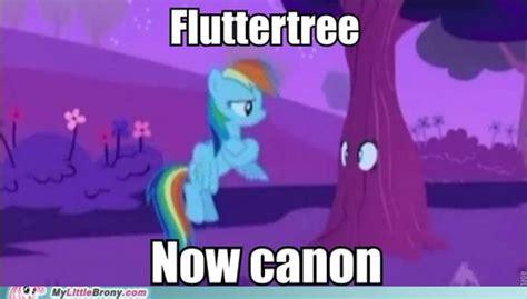 my little brony meme image my little brony meme comic fluttertree now canon