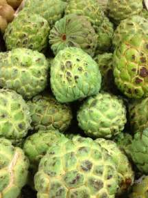 Fruit Of The Graviola Tree - graviola 7 exotic fruits from the amazon to try food