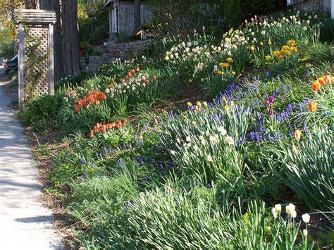 aménagement talus en pente 602 jardin en pente raide interesting ides pour de votre