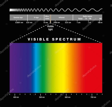 electromagnetic spectrum visible light electromagnetic spectrum and visible light stock vector