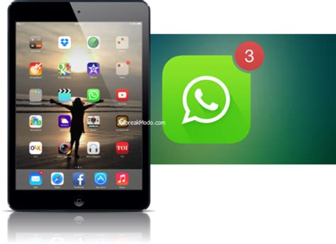 tutorial memasang aplikasi whatsapp di ipad cara download whatsapp untuk ipad daily gadget portal