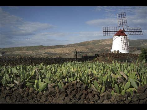 oltre il giardino mymovies a jardin de cactus lanzarote 28 o scarpa mymovies it