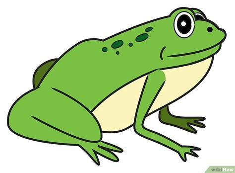 libro una rana a frog come disegnare una rana 18 passaggi illustrato