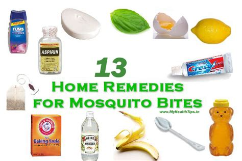 best home remedies for mosquito bites my health tips