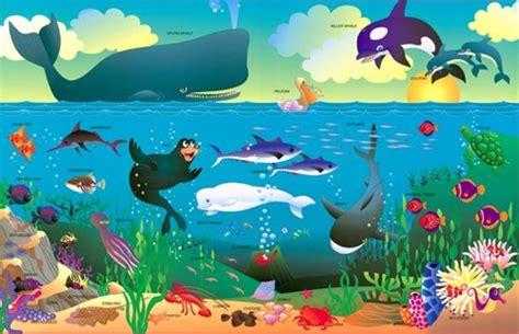 imagenes animales que viven en el mar imagenes de animales que viven en el mar imagui