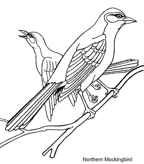 free coloring pages of texas mockingbird