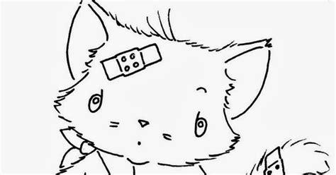 """Particulier Poeshotel """"Kat in de Weer'': Samenwerking dierenarts"""