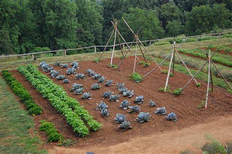 vegetable garden plot layout akak ru