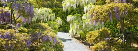 Longeood Gardens by Longwood Gardens The Constitutional Walking Tour Of