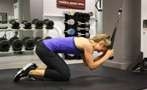 workout routine  gain muscle muscle building