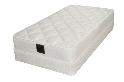 can bed bugs live in memory foam king mattress sale toronto 3 seater outdoor rattan sofa