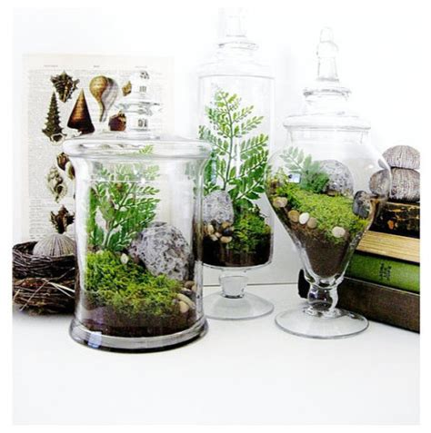 garden terrarium gift set in apothecary jars by