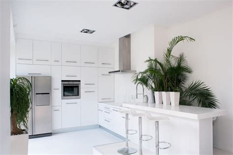 Cute Kitchen Ideas For Apartments white kitchen with eye catching indoor plants decoist