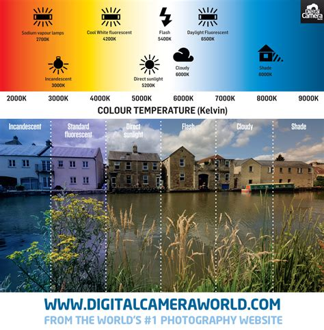 White Balance white balance explained how cameras correct the color of