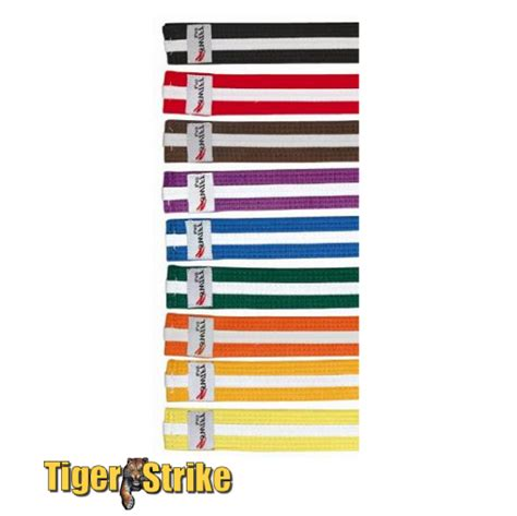 karate belt order of colors karate belt colors in order pictures to pin on