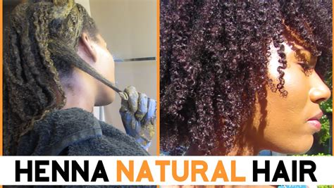 coloring gray african american hair with henna henna on natural hair kashtv youtube