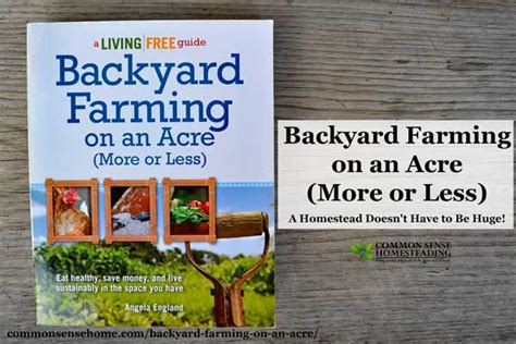 backyard farming on an acre backyard farming on an acre more or less living big in
