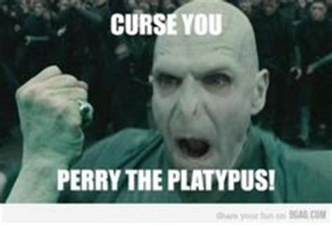 Perry The Platypus Meme - bahahahahaa i m rofling pahaha pinterest harry
