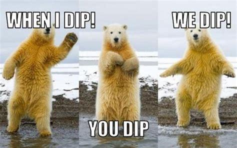 Dancing Polar Bear Meme - gangnam style dancing polar bear funny picture