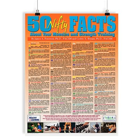 50 nifty facts about your muscles and strength poster2 strength and conditioning